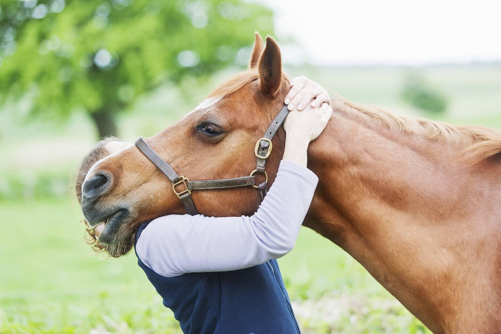 Woman hugging horse